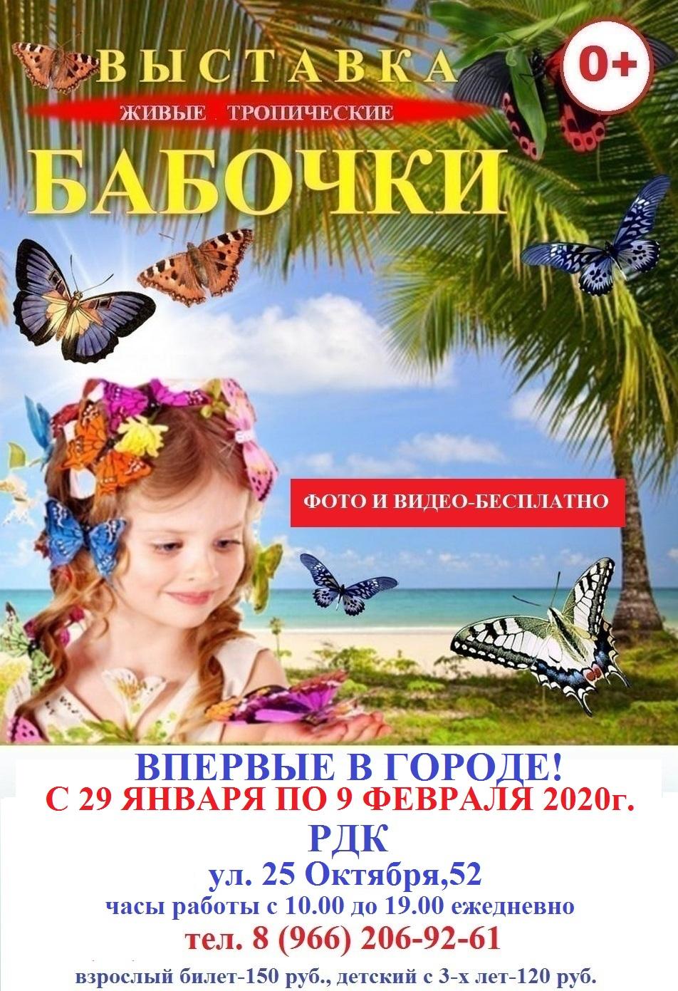 Выставка «Бабочки»
