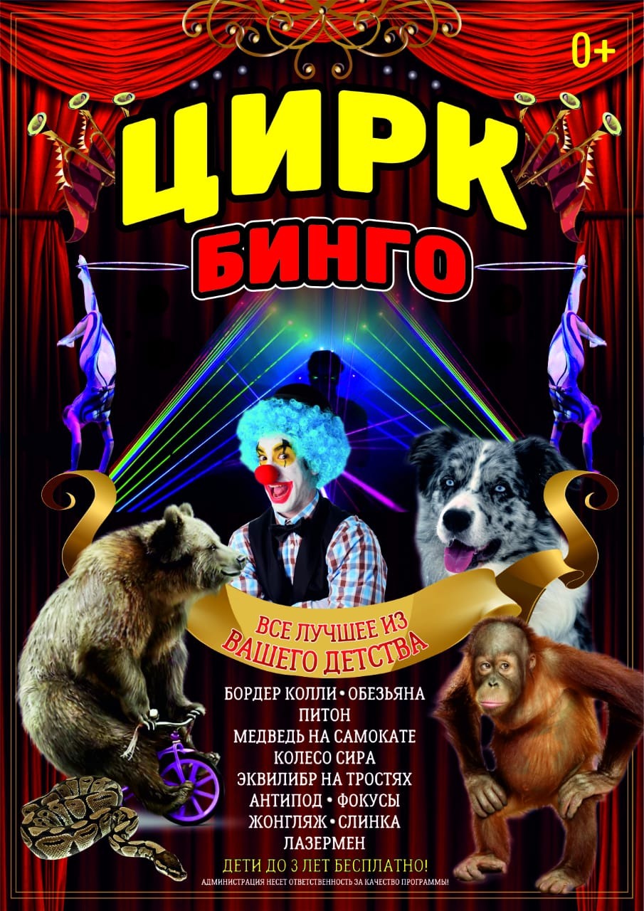 Цирк «Бинго» приглашает